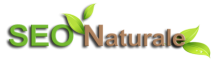 SEO Naturale, search engine optimization consultancy firm logo